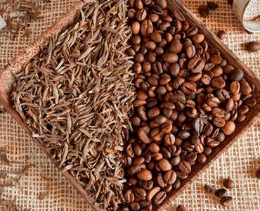 Une teneur modérée en caféine